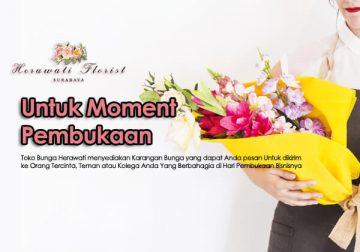 bunga papan 29