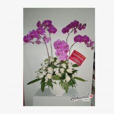 bunga lekas sembuh - BOUQUET 011